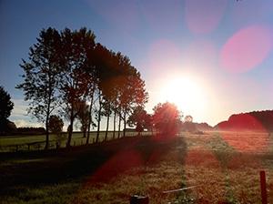 sunrise-camino-de-santiago-galicia-caminoways
