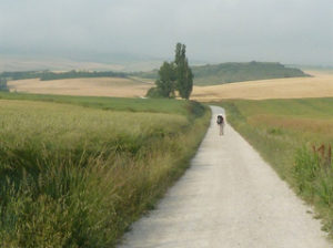 the-way-camino-article-caminoways