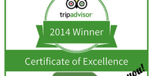 tripadvisor-award-caminoways-2014