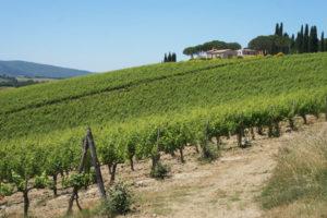 val-dorcia-tuscany-via-francigena-italy-caminoways