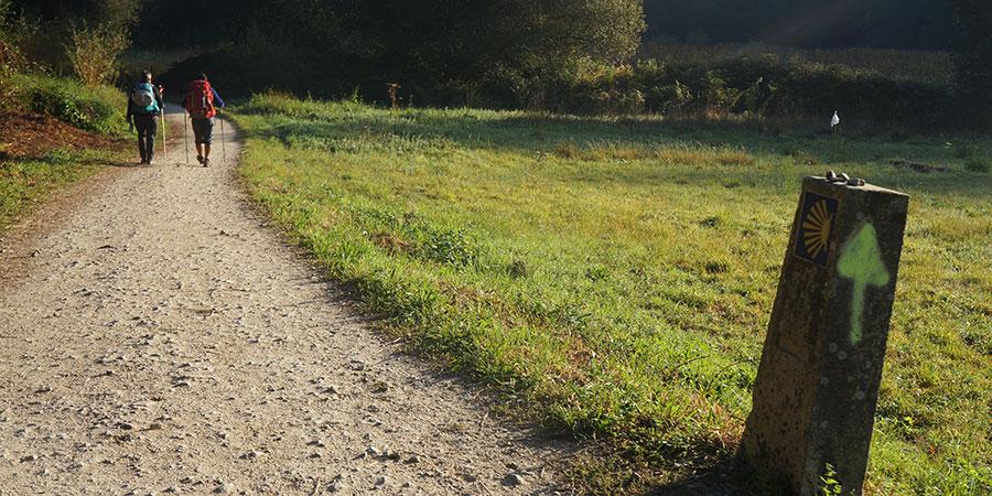walkers-camino-portugues-camino-de-santiago-caminoways