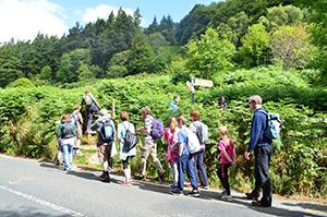walkers-caminoways-walking-festival-wicklow-way