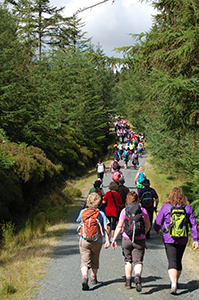 walkers-caminoways-walking-festival