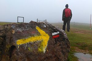 yellow-arrow-pyrenees-walk-the-camino-de-santiago